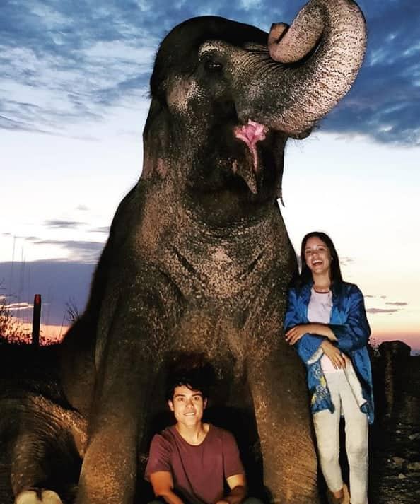 Flora the elephant